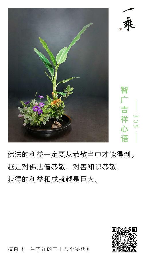 智广吉祥心语305
