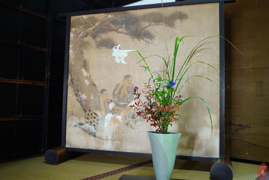 """你是世界上唯一的那朵花丨智广阿阇梨百观音巡礼之""""枫彩观自在""""(六)"""