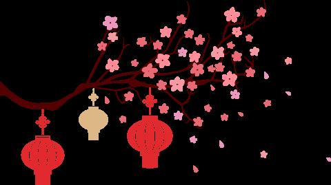 来自智广阿阇梨的新春礼物