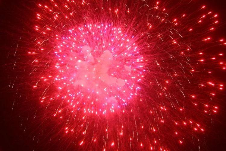 迎新年除障息灾法会共修通启|和智广阿阇梨一起迎新年